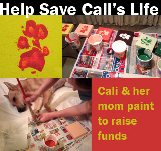 Cali and her mom paint to save her life