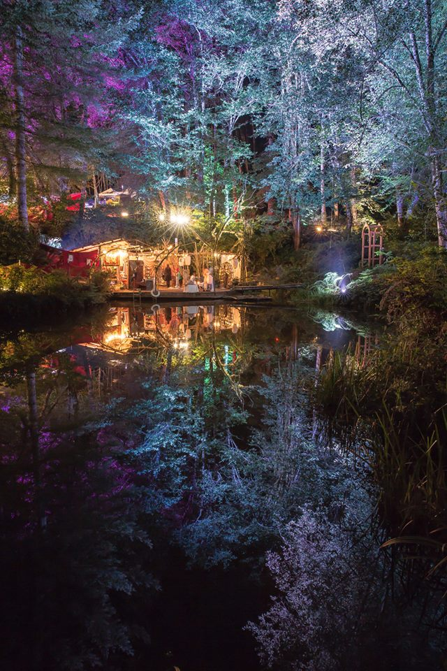 The Secret Lake, Beloved Festival 2014